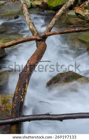 Branches over the waterfall - stock photo