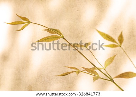 Branches with leaves in golden light with texture layers added for an artistic look. - stock photo