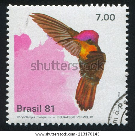BRAZIL - CIRCA 1981: stamp printed by Brazil, shows  Hummingbird, Chrysolampis mosquitus, circa 1981 - stock photo