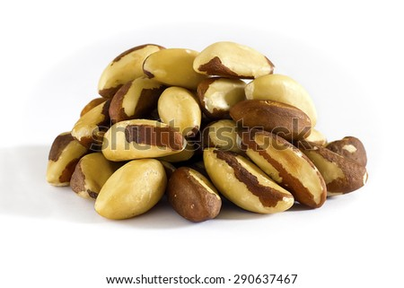 Brazil nut. Front view. White background. Selective focus. - stock photo