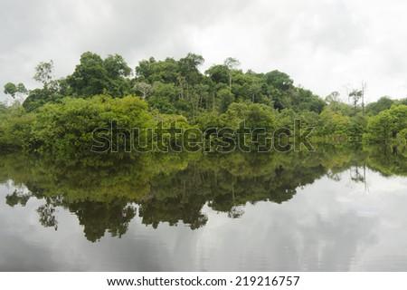 Brazil, Reflection on the Amazon Rainforest - stock photo