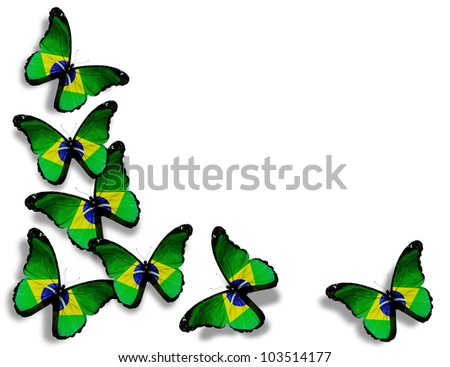 Brazilian flag butterflies, isolated on white background - stock photo