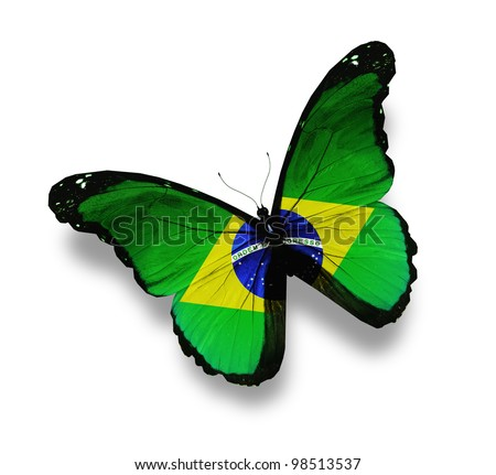 Brazilian flag butterfly, isolated on white - stock photo