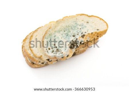 bread on the white background - stock photo