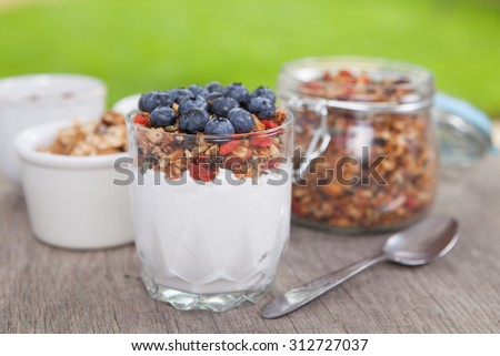 Breakfast in the garden: coconut yogurt topped with grain free paleo muesli granola made with mixed nuts, seeds, raisins, with blueberries on the top, selective focus - stock photo