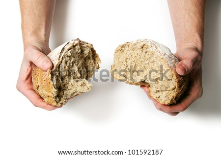 Breaking apart a fresh loaf of bread against a white background. - stock photo