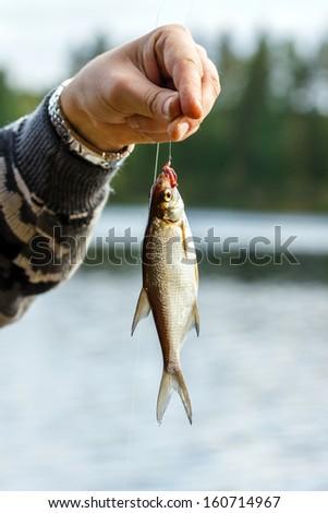bream fishing - stock photo