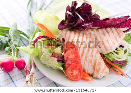 Breast of chicken with fresh salad decoration - stock photo