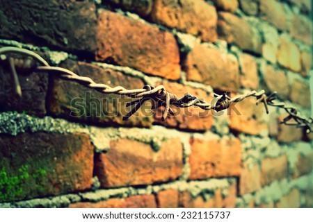 brick and wall - stock photo