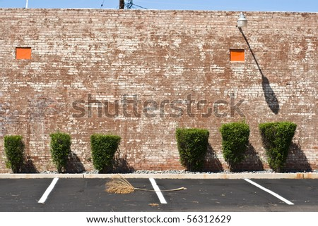 Brick wall, trimmed bushes, parking spaces and palm frond - an unusual composition. - stock photo