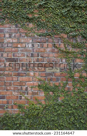 brick wall with grass - stock photo