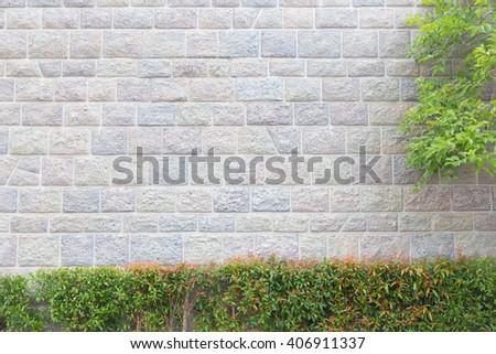 Brick wall with trees - stock photo