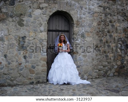 Bridal portrait - stock photo