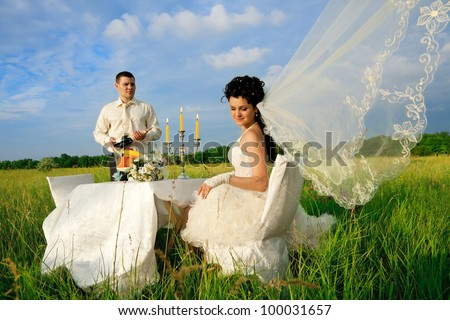 Bride and groom at wedding table on the field - stock photo