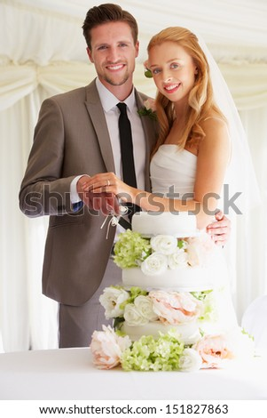 Bride And Groom Cutting Wedding Cake At Reception - stock photo
