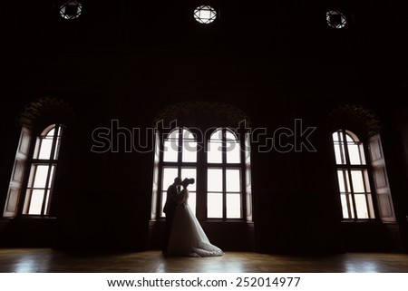 Bride and groom in a palace - stock photo