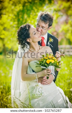 Bride and groom in a park kissing - stock photo