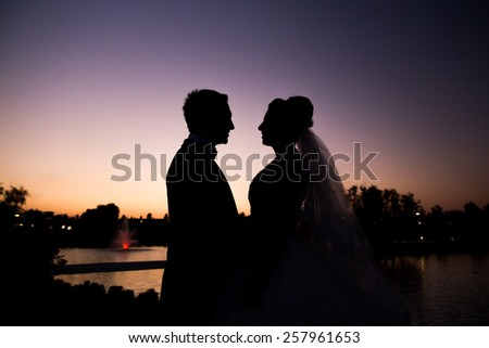 Bride and groom in silhouette during sunset - stock photo