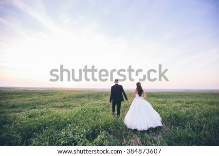 Bride and groom walking and holding hands on a meadow. Wide angle sunset photo. - stock photo