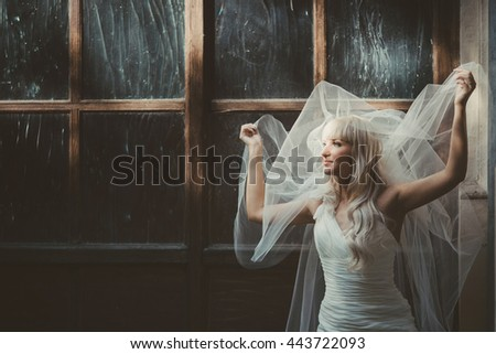 Bride holds her veil up posing behind an old big wooden window - stock photo