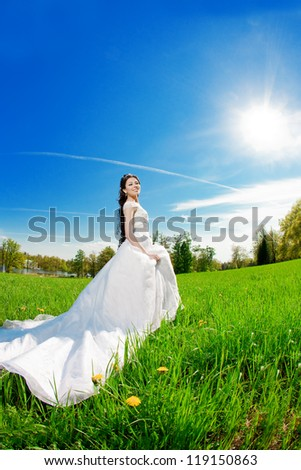 Bride on a field in the sunshine - stock photo