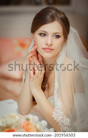 Bride portrait wedding day, young beautiful woman in wedding dress. soft tonality. series - stock photo
