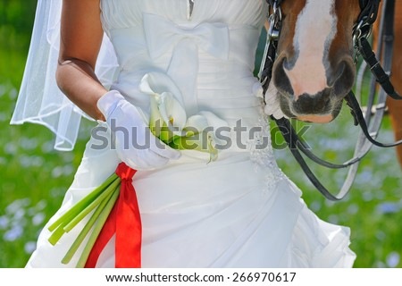 Bride with sorrel horse. Details - stock photo