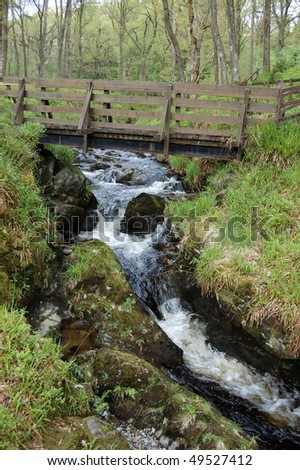 Bridge and waterfall over a small stream in the Queen Elizabeth Forest Park, Aberfoyle, Scotland - stock photo