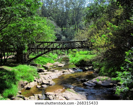 Bridge over small river in tropical park. Shot in Paradise Valley Nature Reserve, Durban, South Africa. - stock photo