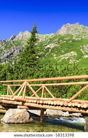 Bridge over the creek in Tatra, Slovakia - stock photo
