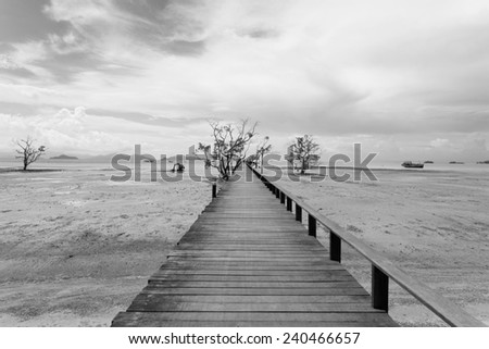 Bridge over the sea during ebb tide in black and white - stock photo