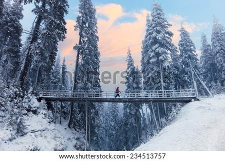 Bridge over the snowy mountains surrounded by pines - stock photo