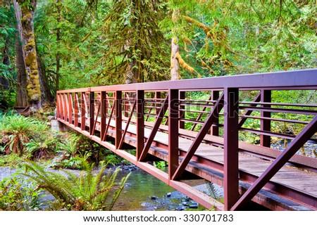 Bridge to Marymere Falls - stock photo