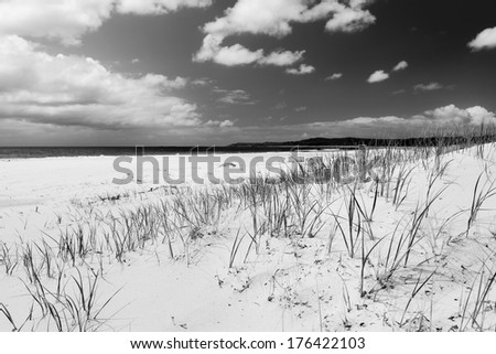 Bright blue sky with white sand and green grass on the sand dunes in stunning black and white - stock photo