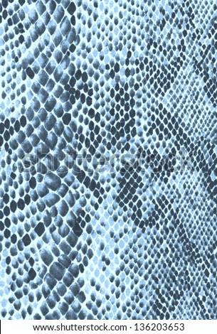 Bright blue snake skin, background - stock photo