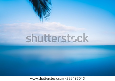 Bright, coastal scene of a palm tree leaf and blissful clouds hovering over a beach in Nuevo Vallarta, Mexico - stock photo