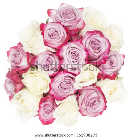 bright delicate fragrant flowers of white and pink roses with unusual intense crimson petals edged in a bouquet isolated on a white background - stock photo