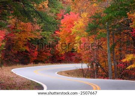 Bright fall leaves on as-curve. Georgia's Fort Mountain. - stock photo