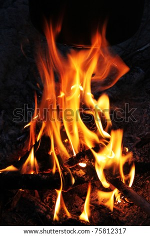 Bright flame of a fire on night - stock photo