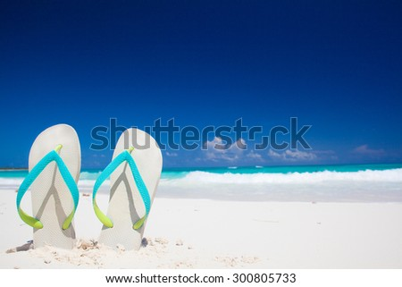 bright flip flops on a tropical sea resort background - stock photo