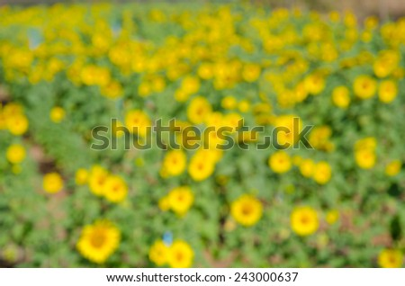 Bright green and yellow blur bokeh abstract light flora background - stock photo