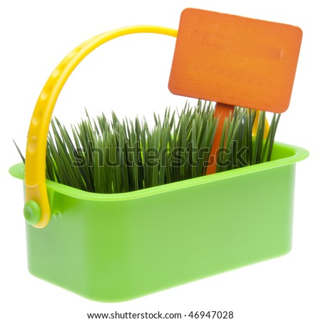 Bright green basket of spring grass with an orange blank garden sign isolated on white with a clipping path. - stock photo