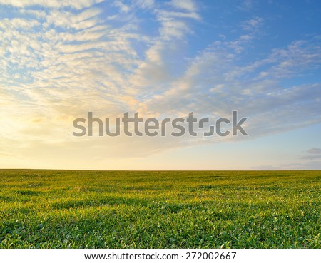bright green field under a colorful sunset sky - stock photo