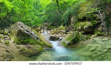 Bright jungle with river. Natural landscape - stock photo