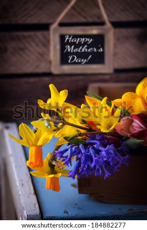 Bright spring flowers on dark wooden background. Happy Mother's Day. Selective focus. Rustic style. - stock photo