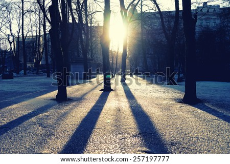 Bright spring sun shining through the trees in the park with shadows on the ice - stock photo