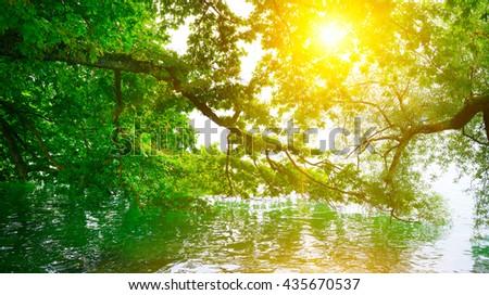 Bright sunrise on shore of picturesque lake - stock photo