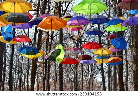 Bright umbrellas on the trees. Vivid Colors. Freedom concept - stock photo