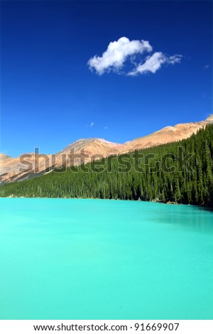 Bright waters of Peyto Lake at Banff National Park in Canada - stock photo