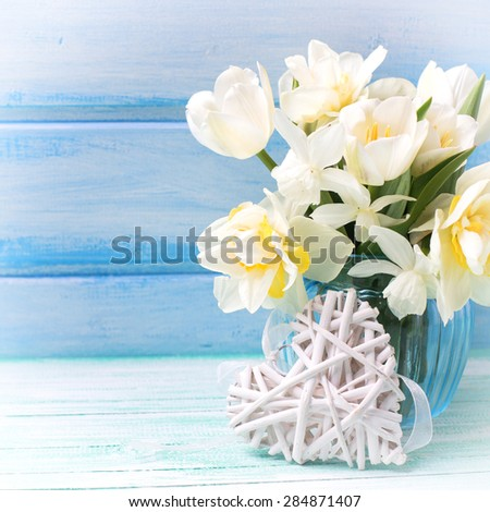 Bright white daffodils and tulips  flowers in blue vase and white heart  on turquoise  painted wooden planks against blue wall. Selective focus. Place for text.Square image. - stock photo